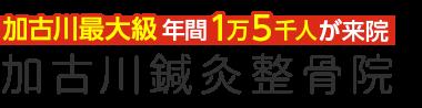 加古川鍼灸整骨院/医師や教授が絶賛する整体技術 ロゴ