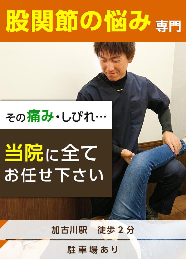 膝や股関節の悩み専門